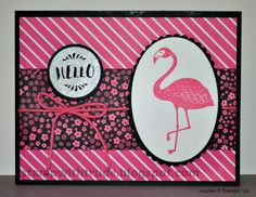 Pop of Paradise Hello card by stampwithtrude - Cards and Paper Crafts at Splitcoaststampers