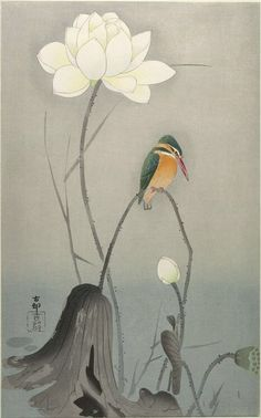 Ohara Koson, Kingfisher with Lotus Flower (Early 20th Century)