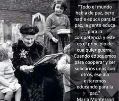 maestro novel essays