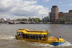 London Duck tours (LW19)