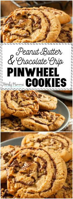 Peanut Butter & Chocolate Chip Pinwheel Cookies - Cookie Recipes for Kids Yummy Cookies, Yummy Treats, Sweet Treats, Köstliche Desserts, Delicious Desserts, Dessert Recipes, Peanut Butter Recipes, Chocolate Peanut Butter, Chocolate Cookies