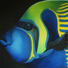 """Emperor Angel Fish"", oil on canvas, 48"" x 48"", 122cm x 122cm"
