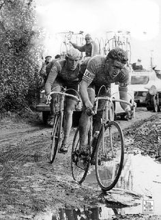 Freddy Maertens and Roger De Vlaeminck - Paris-Roubaix Paris Roubaix, Cycling Art, Cycling Bikes, Vintage Cycles, Vintage Bikes, Bike Poster, Bicycle Race, Classic Bikes, Bicycle Tattoo