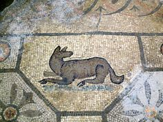 "Lovely wolf (?) from the basilica at Aquileia - which was once called ""The Second Rome"""