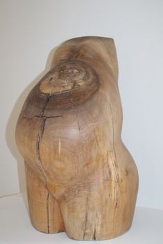 the natural grain of the wood really enhances this piece Wooden Statues, Wooden Art, Anatomy Sculpture, Wood Animal, Art Walk, Contemporary Sculpture, Animal Sculptures, Wood Sculpture, Animal Design