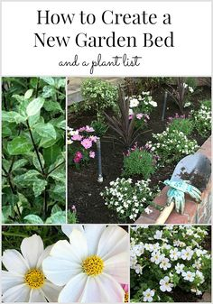 How to create a garden bed and a perennial plant list