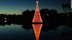A reflection of a Christmas tree in Naples, Florida.