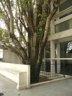 100420-46 LA PLATA - Casa Curuchet (arq. Le Corbusier) - Terraza