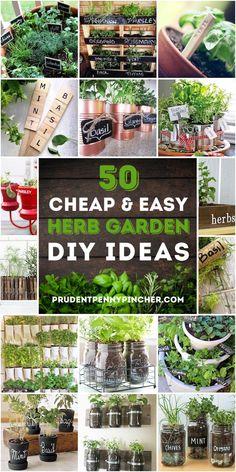 50 Cheap and Easy DIY Herb Garden Ideas#cheap #diy #easy #garden #herb #ideas Diy Herb Garden, Easy Garden, Garden Ideas To Make, Herbs Garden, Herb Gardening, Small Herb Gardens, Outdoor Gardens, Herbs Indoors, Small Space Gardening
