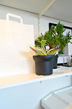 The Fifthhouse blog; A tiny peek inside my own home. #blog #interior #styling #urban jungle