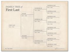 free printable family tree chart template decorations for family history activity - Free Editable Family Tree Template