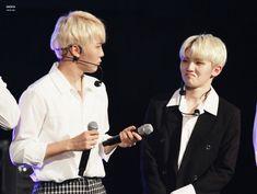 Amo las caras que hace jihoon #seungkwan #woozi