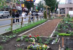 A First Timer's Guide to Getting a Community Garden Plot: As demand for community garden space grows, savvy first-timers are upping their chances at a prime plot by taking these steps