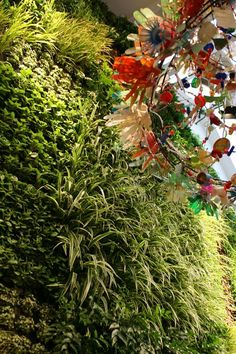 The incredible living wall at Anthropologie in London via Wee Birdy. #lifeinstyle #greenwithenvy