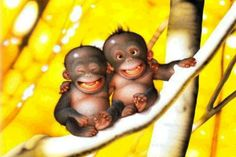 We will make you laugh! Enjoy extremly funny pictures of monkeys and cute monkey cartoons. New pictures everyday Tier Wallpaper, Monkey Wallpaper, Baby Animals, Funny Animals, Cute Animals, Smiling Animals, Smiling Faces, Happy Faces, Animal Babies
