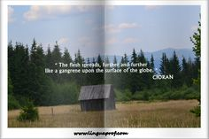 In The Flesh, Tourism, Globe, Surface, Turismo, Speech Balloon, Travel