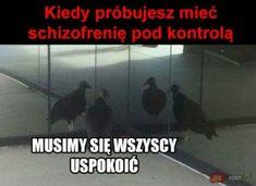 Memes Humor, Jokes, Very Funny Memes, Wtf Funny, Hahaha Hahaha, Polish Memes, Funny Mems, Everything And Nothing, Weird Stories