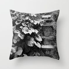 ...In times of plenty and in times of lack Throw Pillow by Fenia Stavra - $20.00