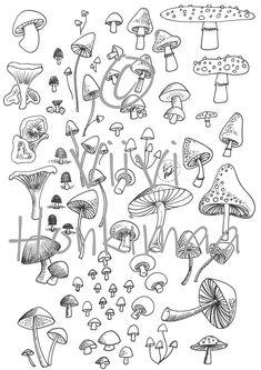 Mushroom Drawing, Mushroom Art, Tiny Mushroom, Art Drawings Sketches, Tattoo Drawings, Tattoo Sketches, Doodle Drawings, Art Tattoos, Mini Tattoos