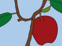 How to Grow Apple Seeds (with Pictures)