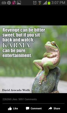 People that dont see truth and believe lies of fools will see the karma