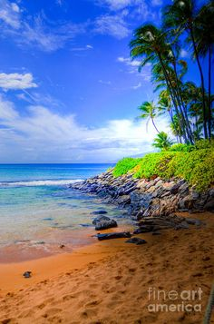 Napili Bay Maui, Hawaii