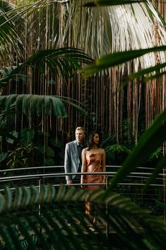 Greenhouse Botanical garden shoot!  Atlanta Botanical Garden, Botanical Gardens, Engagement Pictures, Engagement Shoots, Prenuptial Photoshoot, Wedding Photoshoot, Wedding Pics, Wedding Stuff, Garden Photos