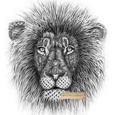 This type of mane/fur i do not like ;-P