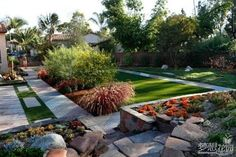 Image result for colorado cactus front yard
