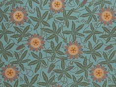 Bradbury & Bradbury | Victorian | Passion Flower Wallpaper from the Herter Brothers Roomset