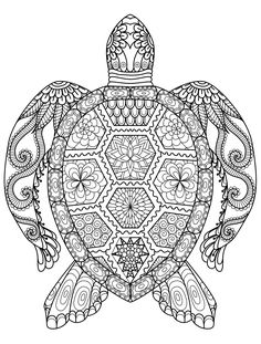 sea turtle coloring page for adults for free download