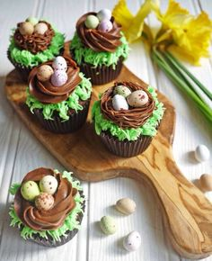Easter Chocolate Nest Mini Egg Cupcakes: Give your favorite candy eggs a special home on top of one of these tasty cupcakes. Click through for more easy and cute Easter cupcakes for kids. Talk about jinx it. I was one of those awful mothers that said Spring Cupcakes, Easter Cupcakes, Easter Cookies, Cupcakes Kids, Easter Cake Nest, Easter Cake Mini Eggs, Childrens Cupcakes, Easter Cake Pops, Bunny Cupcakes