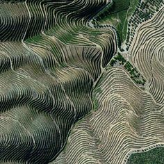 The terraced hillsides of the Douro Valley in northern Portugal are covered with of grape vines that rise steeply from the Douro River below. The region is recognized as the home of port wine - a sweet red wine that is often served with dessert. /// Created by @benjaminrgrant source imagery: @digitalglobe - Architecture and Home Decor - Bedroom - Bathroom - Kitchen And Living Room Interior Design Decorating Ideas - #architecture #design #interiordesign #homedesign #architect #architectural…