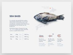 "Web, part 12 — ""Rostfish"" web table sea product card outline icon map fish data Design Sites, App Design, Print Design, Graphic Design, Gui Interface, Interface Design, Editorial Layout, Editorial Design, Web Layout"
