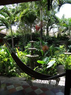 MY favorite spot in Granada! The Garden Cafe Granada Nicaragua Garden Cafe, Garden Pots, Garden Ideas, Indoor Outdoor, Outdoor Living, Outdoor Decor, Granada, Tropical Landscaping, Tropical Gardens