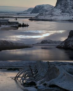 Leviathan (2014) Directed by: Andrey Zvyagintsev Cinematography: Mikhail Krichman, RCG Cameras & Lenses: Arricam ST, Zeiss Master Primes Format: 35mm (Kodak Vision3 250D 5207, Kodak Vision3 500T...