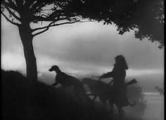 """""""I Know Where I'm Going,"""" 1945 film featuring the Scottish Deerhound and the director's two Cocker Spaniels"""