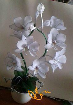 Fehér #orchidea#