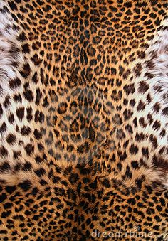 The best herbalist healer Dr ahmed spell caster Iphone Wallpaper King, Heart Wallpaper, Iphone Background Wallpaper, Animal Print Wallpaper, Animal Print Rug, Bedroom Wall Designs, Perfume, Fashion Design Sketches, Leopard Pattern