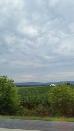 Sky, corn fields...mountains