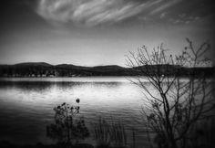 Title:Merrymeeting; Artist Name:Elizabeth DeFeo; Description:Merrymeeting Lake, in metal...; Art Form:Photography; Style:Photorealism; Media:Photography: Metal Print; Genre:Nature
