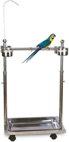 Black COZIWOW 72 Large Parrot Wood Perch Playstand Bird Play Stand with Stainless Steel Tray Bowls Toy Hook Rolling Wheel