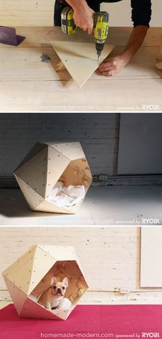 Modern Geometric Doghouse