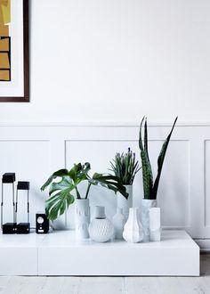 vases with greenery