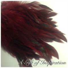 Pack-of-15-Burgundy-Red-dyed-rooster-feathers12-20cm-craft-millinery-flyfishing