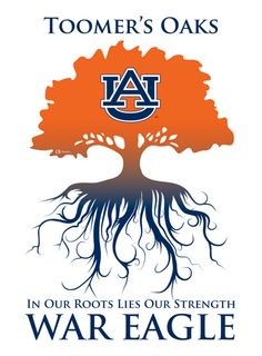 War Eagle, Our Beloved Toomer's Oaks