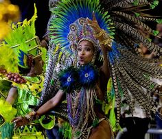 Carnaval de Rio 2013 fotos (29)