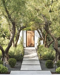 Spanish Colonial White Front Elevation wiith Teak Gate Landscape design by Chris. - Spanish Colonial White Front Elevation wiith Teak Gate Landscape design by Christine London Ltd - Modern Landscape Design, Modern Landscaping, Front Yard Landscaping, Landscape Architecture, Landscaping Ideas, Spanish Landscaping, Stone Landscaping, Landscaping Software, House Landscape