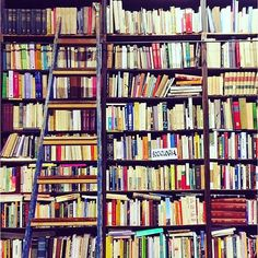 Quem gostava de ter uma escadinha para escalar uma estante? :D  Credits to @sosobooks100  #books #booktag #ravenboys #gansey #sallyjackson #percyjackson #harrypotter #grover #annabethchase  #reading #bookstagram