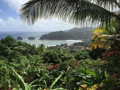 Lush and beautiful - Dominica, the nature island of the Caribbean